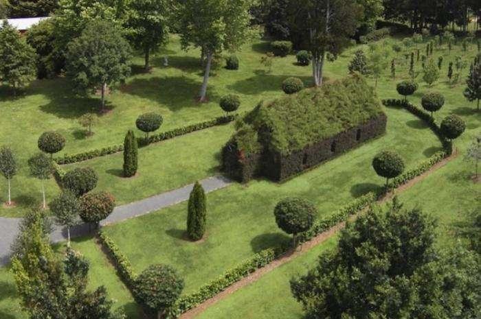 Церква, побудована з живих дерев (4 фото)