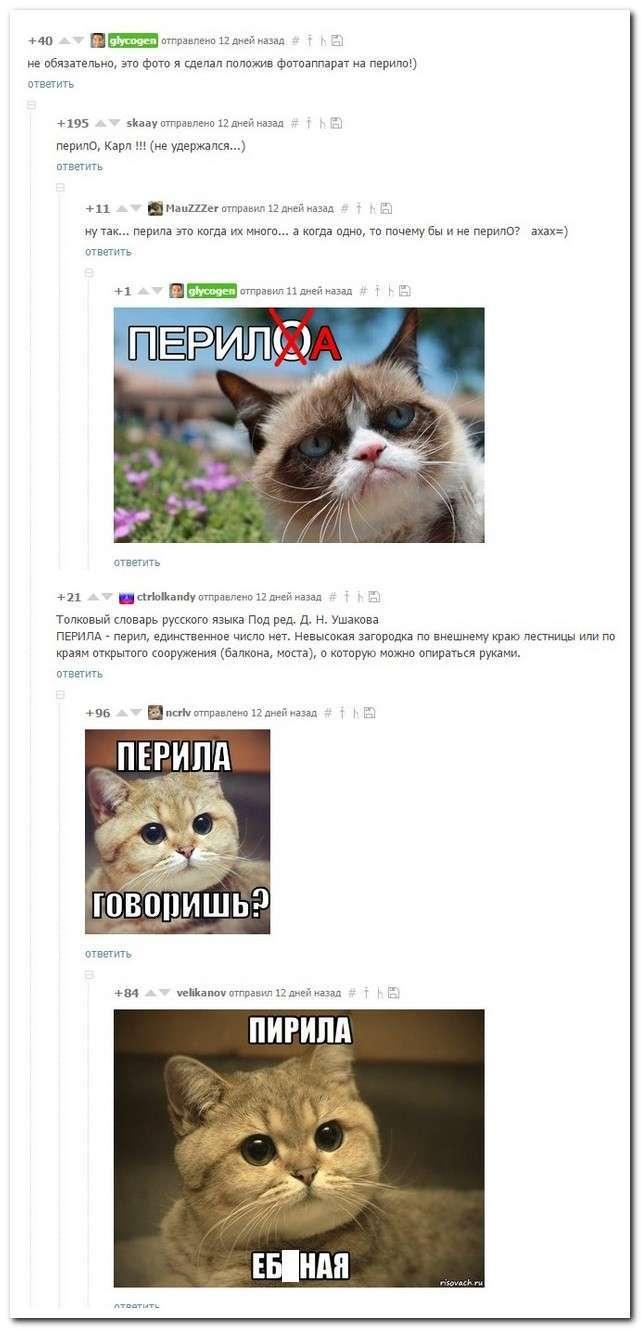 Смішні коментарі із соціальних мереж (25 фото)