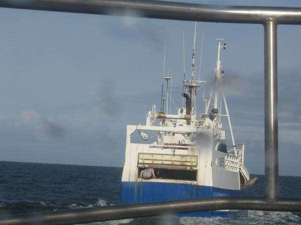 Коли на кораблі зайнятий туалет (2 фото)